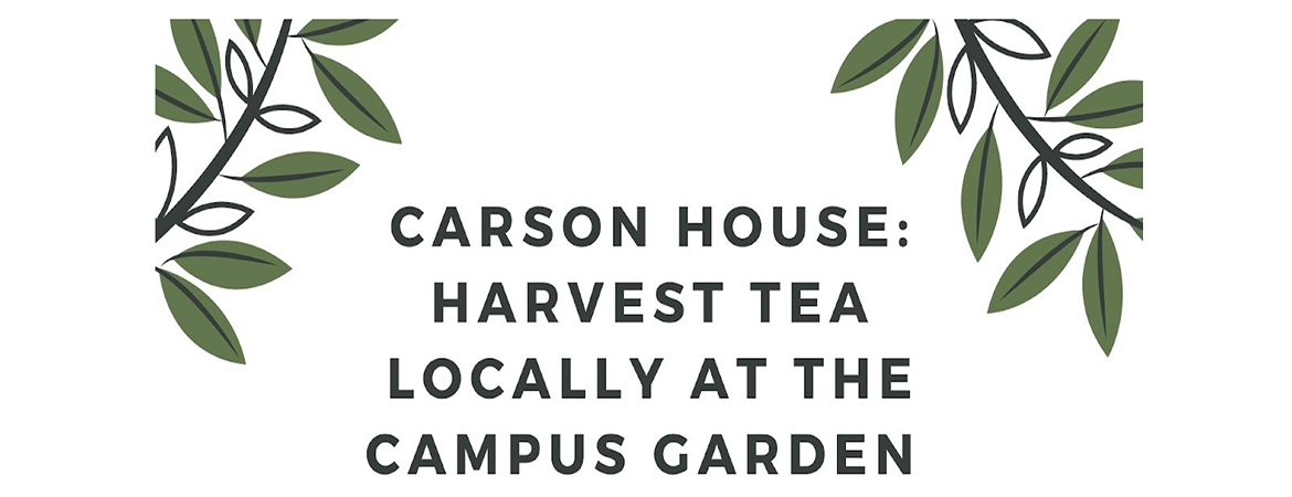 https://sustainability.ucmerced.edu/resources/carson-house-projects